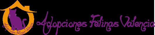 Acogidas y Adopciones de Gatos en Valencia